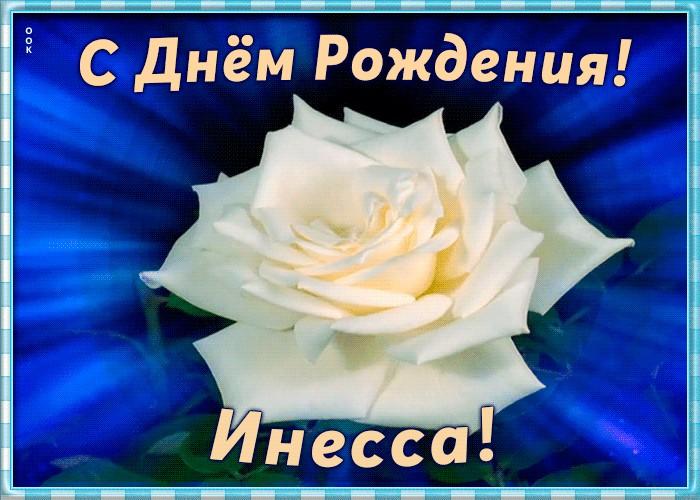 Инесса поздравления с днем рождения картинки